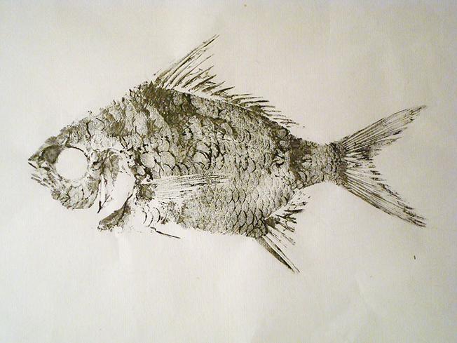 gyotaku4