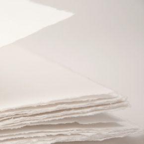 ¿Sabías que el algodón se encuentra también en tu papel?